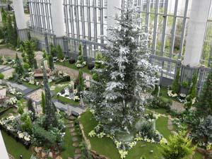 植物園ツリー